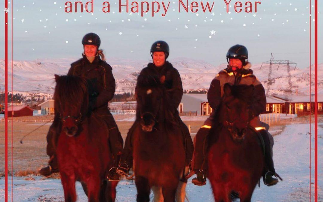 Wir wünschen Ihnen ein frohes Weihnachtsfest und viel Glück im neuen Jahr